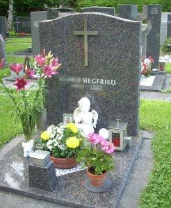 grabstein urnenplatte aus produktion in vorarlberg. Black Bedroom Furniture Sets. Home Design Ideas